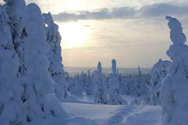 schwedisch-lappland-schneeschuhlaufen